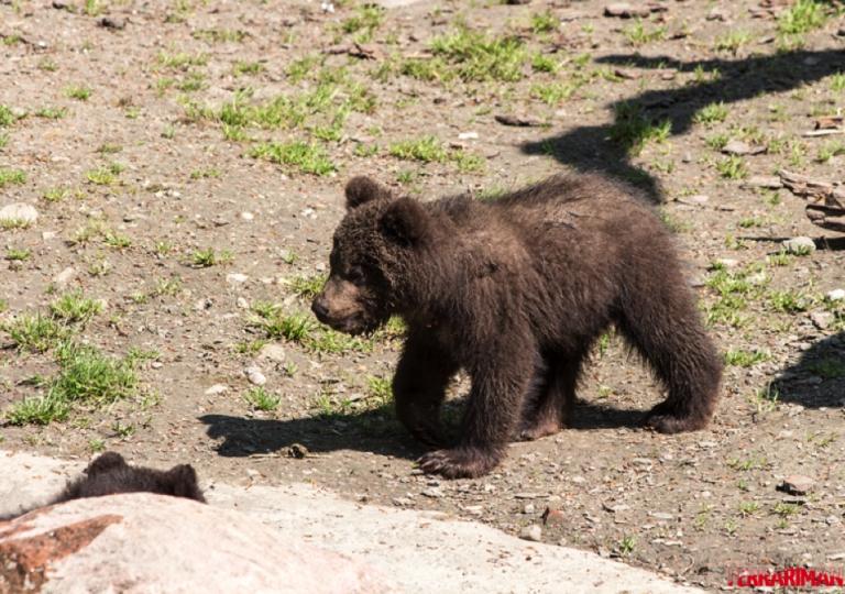 Hagenbeck Tierpark